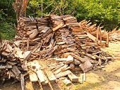 A Lot Of Prepared Firewood