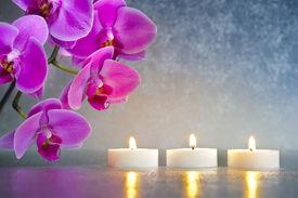 stock photo of garden-art  - Japan zen garden with orchid flower and candle lights - JPG
