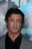 Sylvester Stallone at HBO's