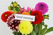Good morning card with colorful dahlia flowers