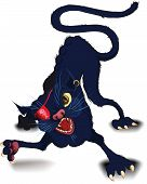 Fight cat