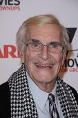 Martin Landau at AARP Magazine's Movies For Grownups, Beverly Wilshire Hotel, Bevely Hills, CA. 02-0