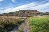 Schoharie Farm Land