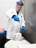 Scientist taking samples from a cryogenic nitrogen container in a science research lab