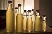Bottles filled with elderflower syrup, shot against the light