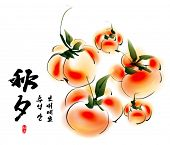 Vector Ink Painting of Persimmons for Korean Chuseok (Mid Autumn Festival), Thanks Giving Day, Harvest Holiday. Translation of Korean Text: Thanksgiving Chuseok (Mid Autumn Festival)