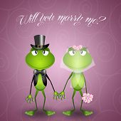 Frog Proposes Marriage