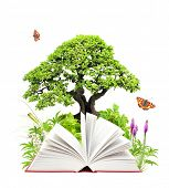 Book of nature. Isolated on white background