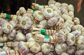 Bunches of fresh garlic at market in France