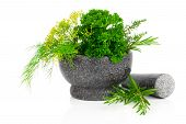 Stone Mortar With  Green Herbs