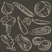 Set Of Vegetable, Garlic, Peas, Cabbage,  Vector Illustration