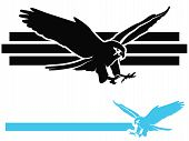 foto of falcons  - Bird of Prey mascot illustrations with black and blue falcon or eagle - JPG