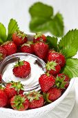 picture of dipping  - Fresh strawberries with vanilla cream cheese dip - JPG