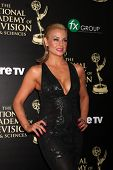 LOS ANGELES - JUN 22:  Jessica Collins at the 2014 Daytime Emmy Awards Arrivals at the Beverly Hilto