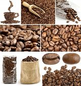 collage of coffee beans