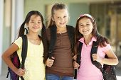 stock photo of school building  - Pre teen girls at school - JPG