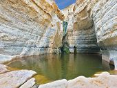 Canyon Ein Avdat in Israel. Thin jet waterfall form cold lake. Sandstone canyon walls form round bow