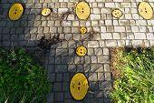 Hydrant Art