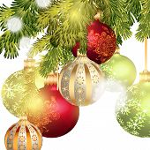 Christmas Baubles Isolated On Christmas Tree Branch