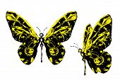 Black Yellow Paint Made Butterfly Set