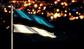 Estonia National Flag City Light Night Bokeh Background 3D