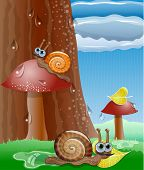 Cute picture with snails.