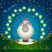 Sheep In The Christmas Decorations