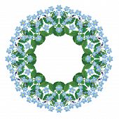 Forget Me Not Floral Round Frame Isolated On White Background. Spring Or Summer Season Flower Elemen