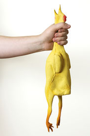 stock photo of masturbate  - Image of a rubber chicken being choked - JPG