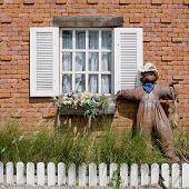 image of scarecrow  - Closeup decoration design of Window with Scarecrow - JPG