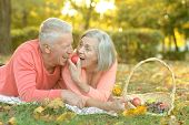 image of copulation  - Portrait of an amusing old couple on picnic - JPG