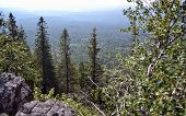 picture of lichenes  - Ural mountains and national park Taganay - JPG