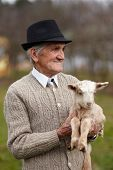 stock photo of baby goat  - Closeup of a senior man holding a cute baby goat outdoor - JPG