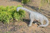 picture of dinosaur  - A plastic toy dinosaur in the garden - JPG