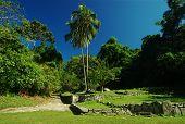 Ruins of a Tayrona Settlement
