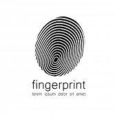 image of fingerprint  - Fingerprint  - JPG