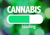 picture of cannabis  - Progress Bar Loading with the text - JPG