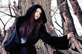 Aufnahme einer gotischen Frau in einem Winter Park. Mode.