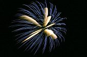 Bursting Firework