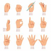 Hands Gesture. Human Palm And Fingers Touch Showing Pointing And Holding Taking Vector Cartoon Colle poster