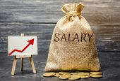 Bag With Money And Word Salary And Up Arrow And Coins. Increase Of Salary, Wage Rates. Promotion. Ca poster