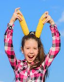 Girl Cheerful Hold Ripe Corns. Corn Vegetarian And Healthy Organic Product. Harvesting And Fun. Kids poster