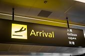 Airport Arrival Sign - International Flight Arrival Information Sign At Airport In English poster