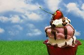 picture of ice cream sundae  - Ice - JPG