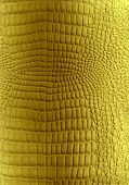 Golden reptile leather texture. Skin of golden reptile to backround
