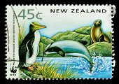 NEW ZEALAND - CIRCA 1991: A stamp printed in New Zealand, shows a yellow-eyed penguin, dolphin  circ
