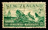 NEW ZEALAND - CIRCA 1956: A stamp printed in New Zealand shows hunt for whales, circa 1956