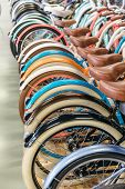 Rear Wheels Of Bicycles Standing In A Row, Selective Focus On First Wheel/ Painted Bike Mud Flaps/ B poster