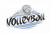Vector Logo For Volleyball, Outline Illustration Of Thrown Ball In Goal, Original Decorative Brush T poster