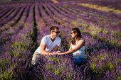 Couple In Love On Lavender Fields. Boy And Girl In The Flower Fields. Honeymoon Trip. Honeymoon. New poster